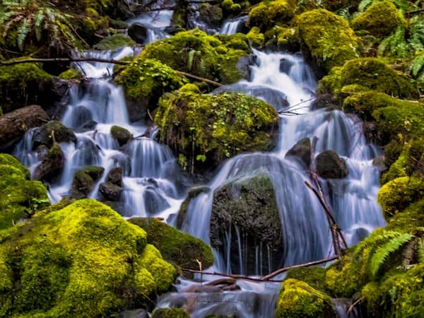 Mt Rainier Waterfall