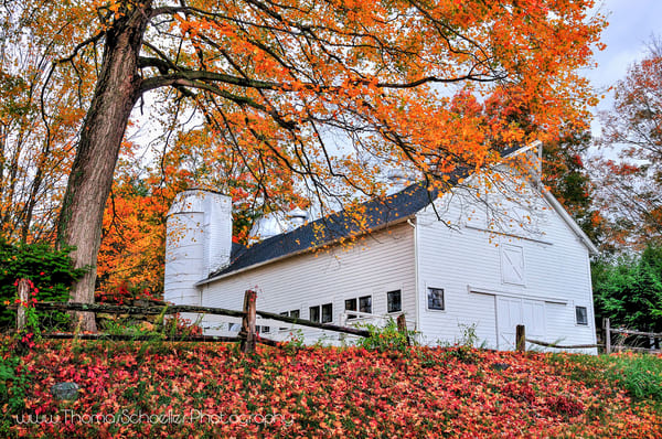 Rural countryside of Roxbury Connecticut featuring a classic white barn/silo and brilliant fall foliage.