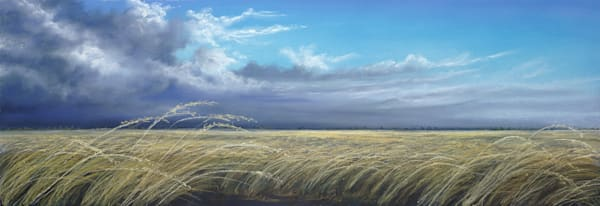 Land of Sweeping Plains by Jenny Greentree