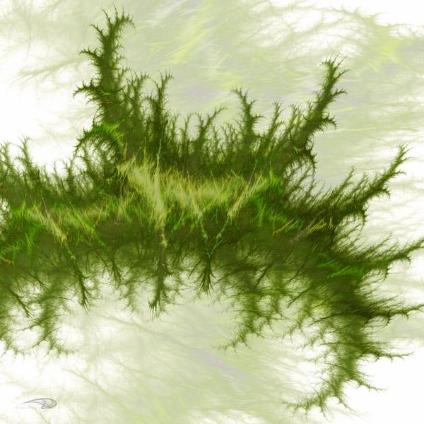 Sea Plant seaweed digital art by Cheri Freund