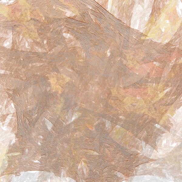 Charred Impressions digital art by Cheri Freund