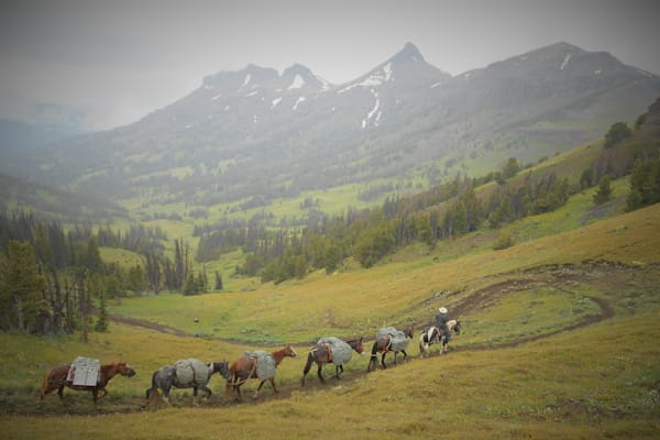 Photograph of a pack string and the Thorofare Buttes for sale as Fine Art