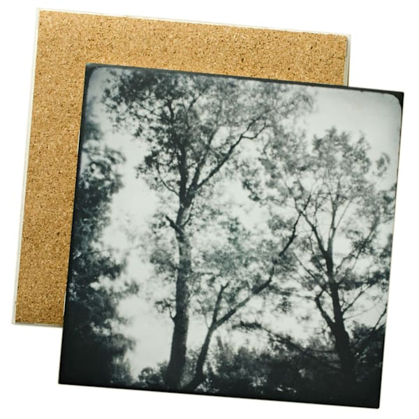 Tree Tops Photo Tile - for sale as 4x4 and 6x6 ceramic tiles