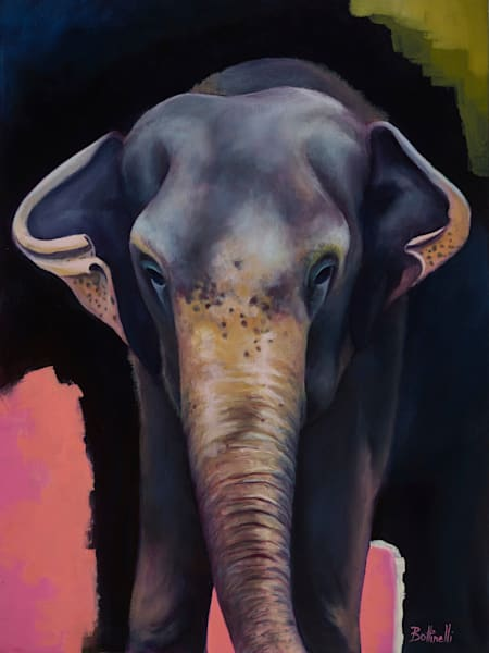 Portrait of an Elephant - Original