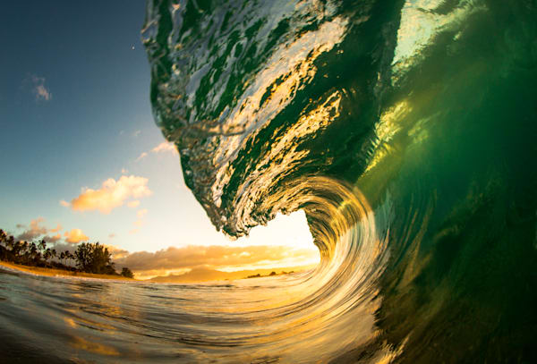 Wave Photography | North Shore Curl by Jaysen Patao