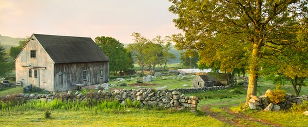 Peter Wnek captures quaint New England barn and pasture