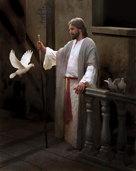 Christ and the Dove