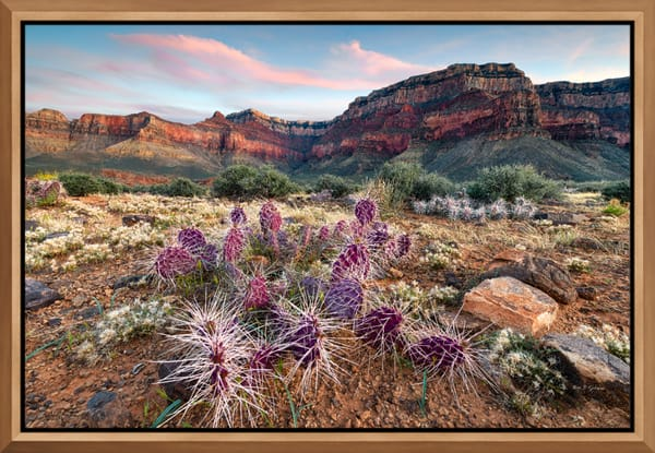 Framed Metal (Aluminum) Fine Art Photo Prints