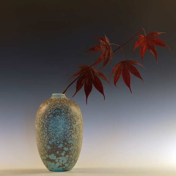 Still Life with Japanese Maple and Raindrops