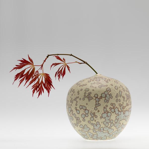 New Chinese Maple