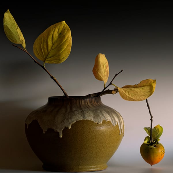 Still Life with Persimmon, GEOAGR124820