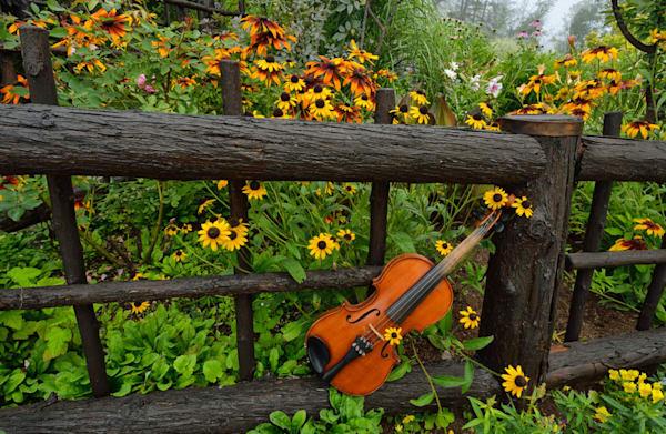 Music In The Garden Ii Photography Art | Instrumental Art