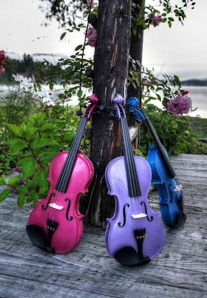 Vibrant Violin Trio II