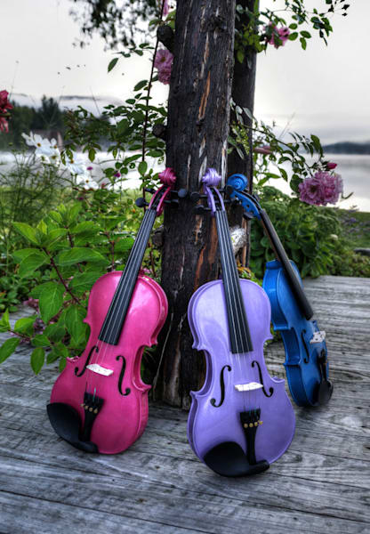 Vibrant Violin Trio Ii Photography Art | Instrumental Art