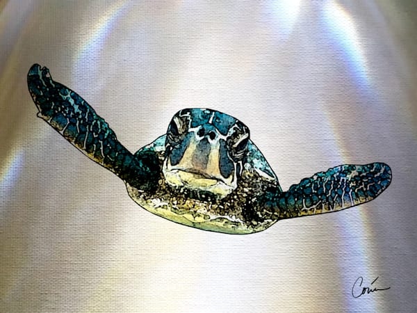 Sea Turtle on a white background with light effects