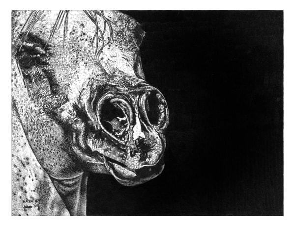 Flea Bit Art | Yvonne Petty Artist