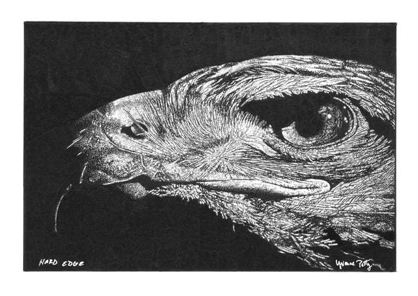 Hard Edge Art | Yvonne Petty Artist