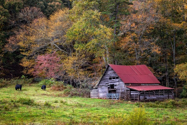Barn in the Smokies