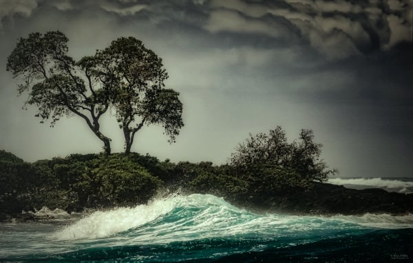 Photo of Emerald Wave, d'Ellis Photographic Art photographs, Elsa