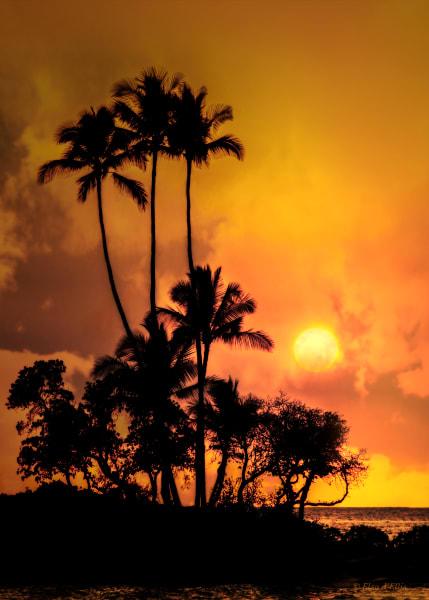 Photo of Fairmont Sunset, d'Ellis Photographic Art photographs, Elsa