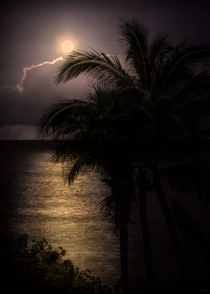 Photo of Maui Moon, d'Ellis Photographic Art photographs, Elsa