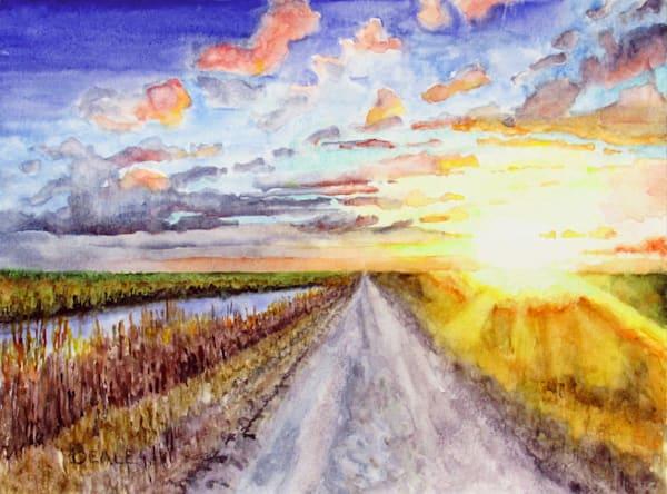 Sunrise On The Sawgrass  Art | David Beale