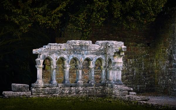 Annaghdown Priory Ruins | d'Ellis Photographic Art photographs, Elsa