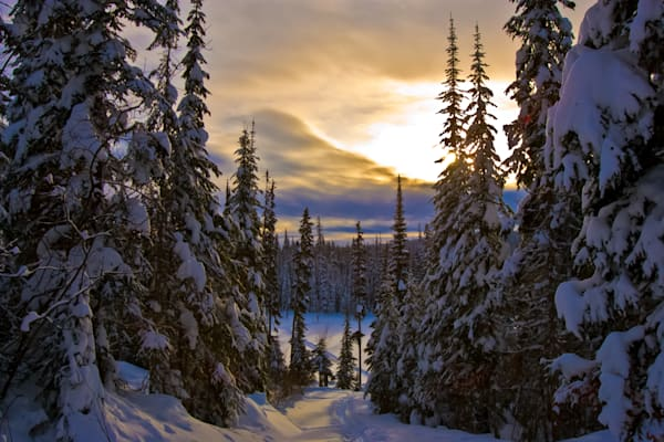 Late afternoon light on the ski trails at Sun Peaks, British Columbia, Canada.