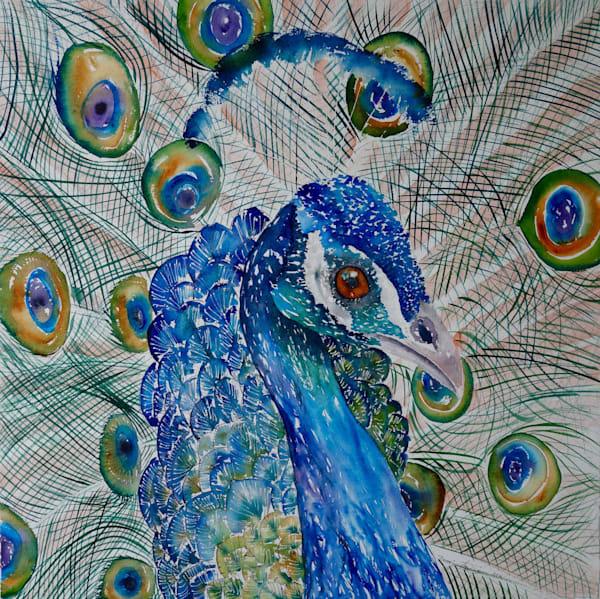 Pierre the Peacock - Original