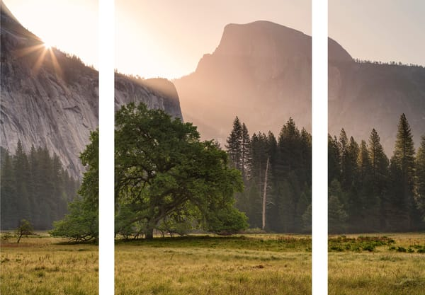 Daybreak in Yosemite Valley (in triptych)