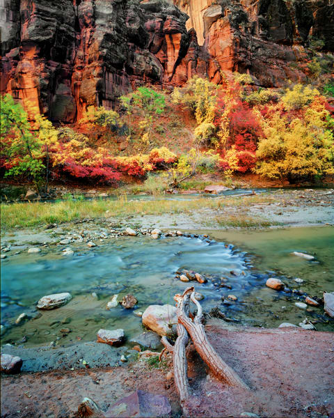 Zion National Park 12