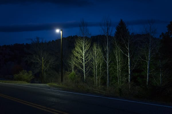 Colorado, Photography, Southwest, nocturne, trees, nightscape