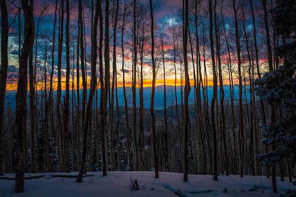 Aspens, Landscape, Photography, Sangre de Christo mountains, Santa Fe, sunset