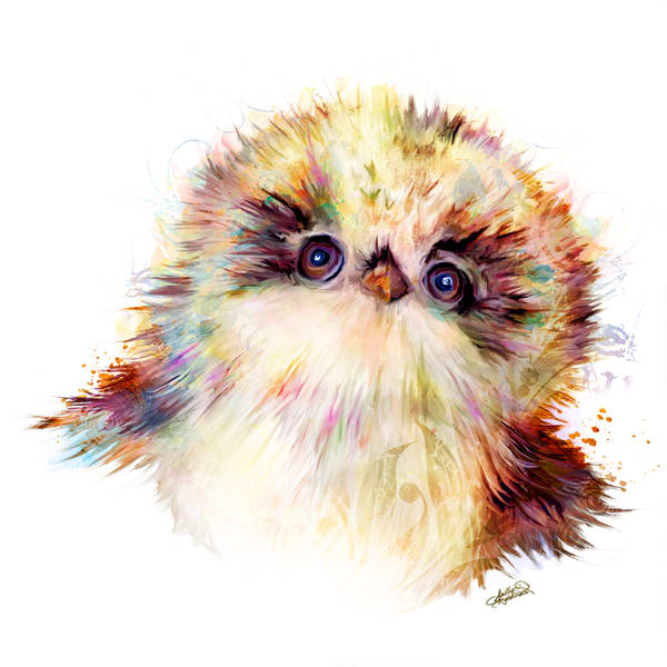 Baby Animal Art | Sally Barlow Art