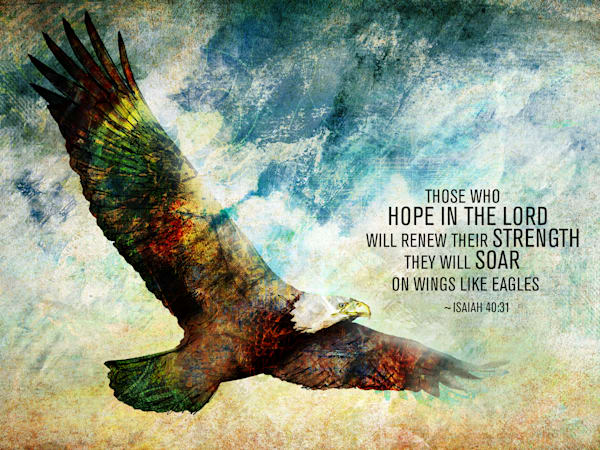 Eagle Soar Isaiah Scripture