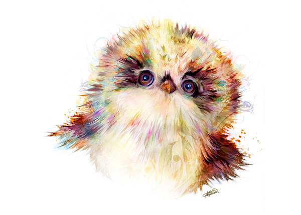 Fluffy baby owl art print by Sally Barlow