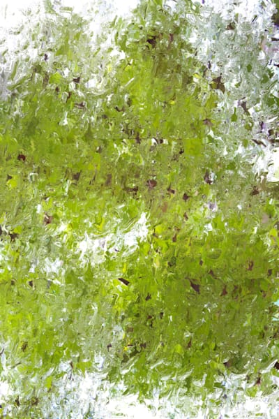 Orl 10278 Forest Greens 2 Art | Irena Orlov Art