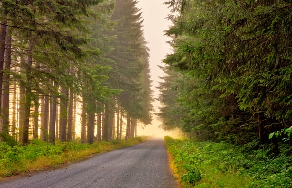 Early Morning On The Road Photography Art | frednewmanphotography