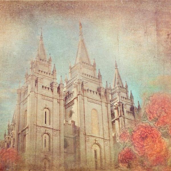 Salt Lake Coral  Art | Mandy Jane Williams Art