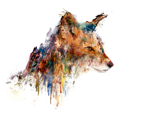 Landscape Fox Art double exposure art by Sally Barlow