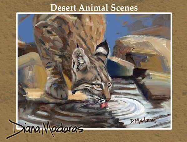 Desert Animal Scenes | Southwest Art Gifts | Tucson Gallery