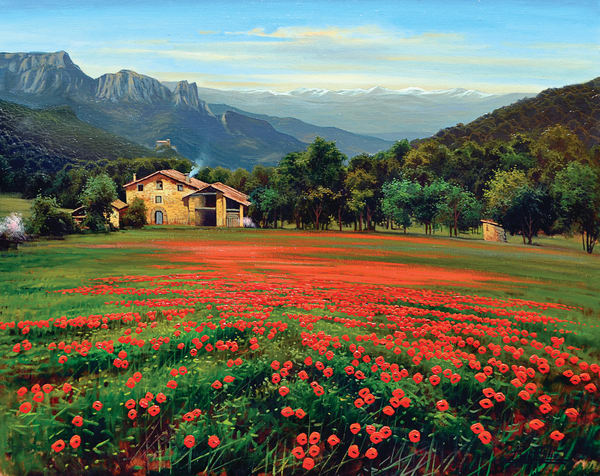 Rubio Poppies In Falgars Er 116 Art | Pixel Mouse House LLC