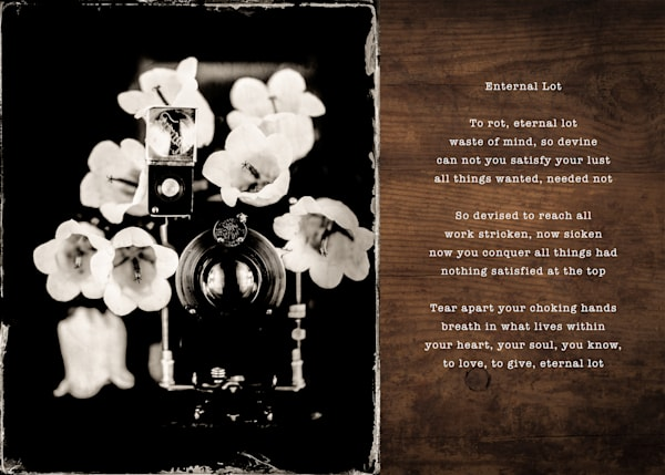 Eternal Lot Pic Poem Photography Art | 1582 Photography
