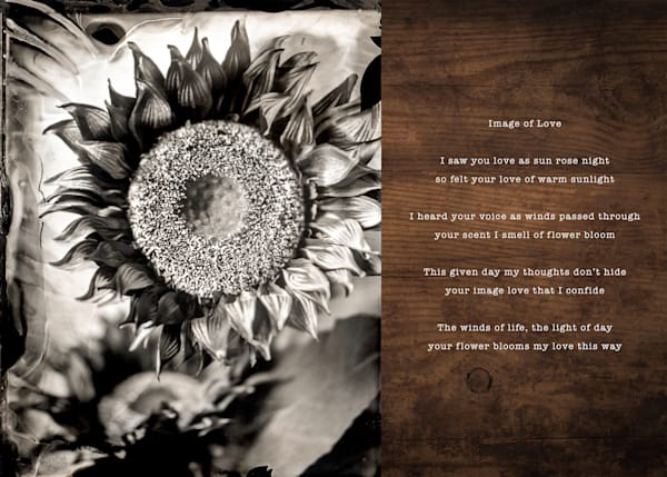 Image Of Love Pic Poem Photography Art | 1582 Photography