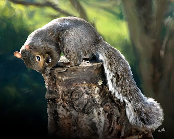 Gray squirrel on a tree stump