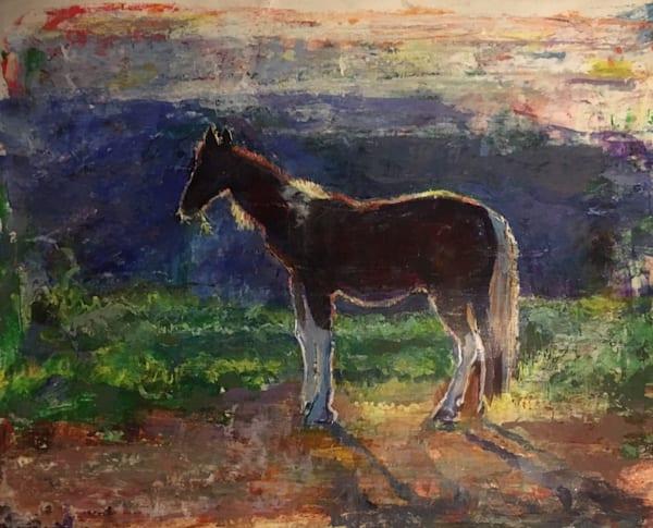 Cavallo Iride