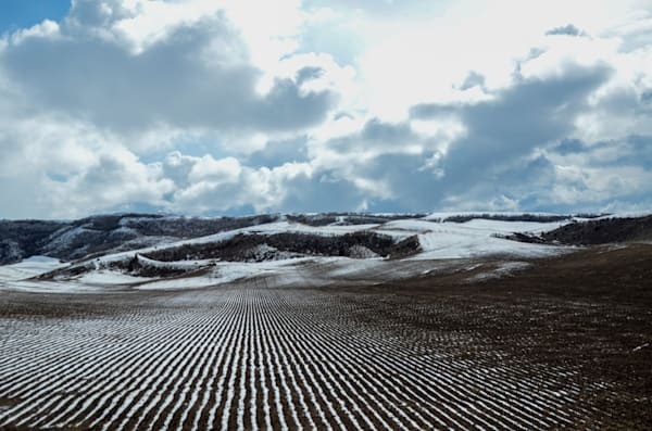 snowy tilled field
