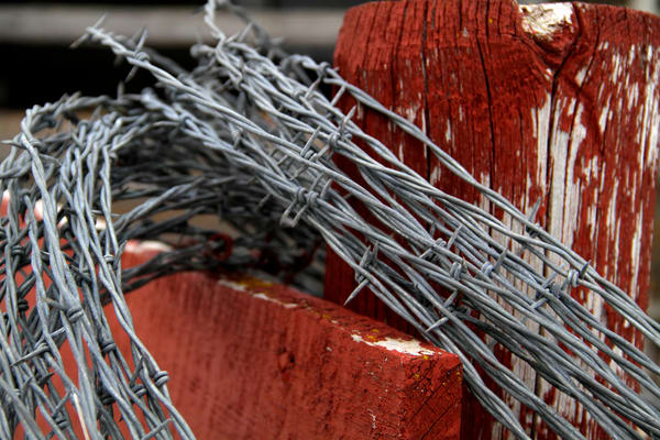 Photograph of Barbed Wire on red barnwood