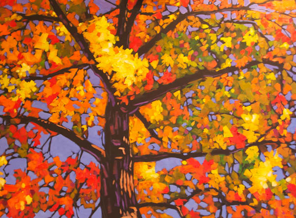 Shop for fine art prints like Autumn Canopy from original oil on canvas painting by Matt McLeod at Matt McLeod Fine Art Gallery.