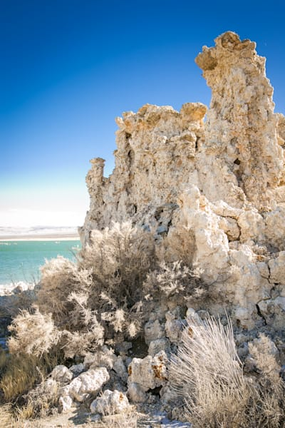 tufa near Mono Lake